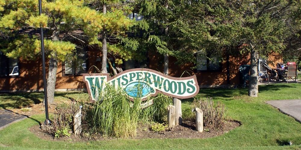 Whisperwoods