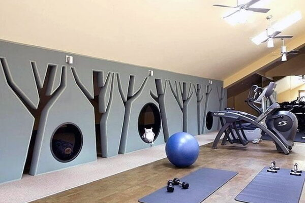 Gym and Yoga Space